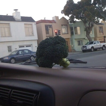 An out-of-place floret of broccoli sits on a car dashboard.